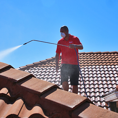 professional roof cleaning in Venice FL