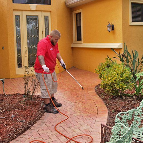 Lakewood Ranch fl brick paver seal to protect mold