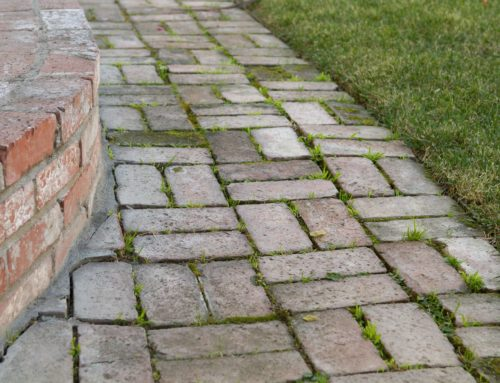 How To Remove Mold & Algae From Brick Pavers
